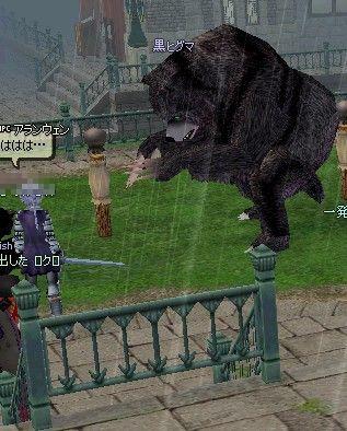 クマ襲撃22